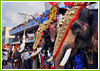 Elephant Festival of Kerala